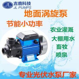 太阳能农业灌溉水泵 地面涡旋泵250W