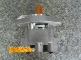 供应BZYX300T岩芯钻机 用齿轮泵齿轮油泵