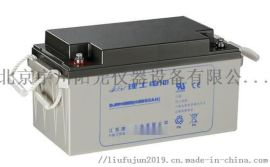 理士蓄电池DJM1265阀控式密封电池