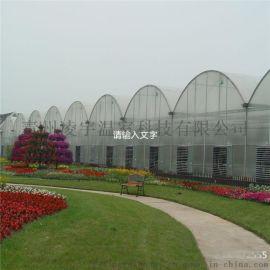 连栋薄膜温室 花卉蔬菜大棚 温室承建 厂家直销
