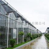 溫室推薦 凌宇玻璃溫室 智慧溫室承建