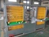蛋鸭笼 自动化养殖笼具 蛋鸭笼养自动化