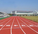 廣西名揚百色體育學校塑膠跑道設計施工