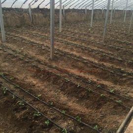 厂家供应农用大棚16贴片式滴灌带 温室灌溉用滴灌带