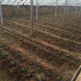 廠家供應農用大棚16貼片式滴灌帶 溫室灌溉用滴灌帶
