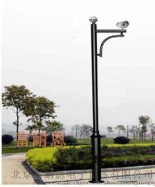 富耐恩供应小区监控杆 公园学校摄像机监控杆货源产地