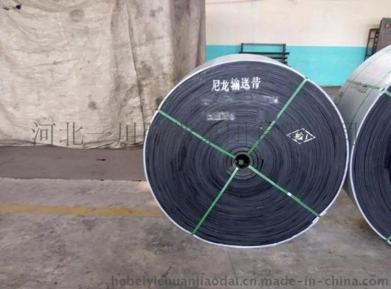 输送带,尼龙带,EP200 ,800宽