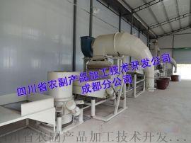 苦荞米生产线,全胚苦荞茶生产线,生产高品质苦荞米