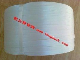 聚酯纤维打包带(13-32MM)
