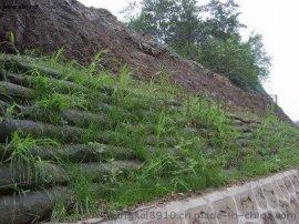 新疆生态袋,荒山植草绿化
