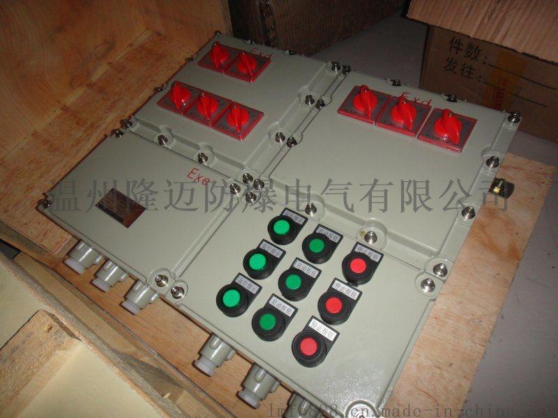 戶外帶防雨罩防爆箱 防護等級IP65