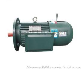 山东电机生产厂家盛华YE2 132kw大功率电机