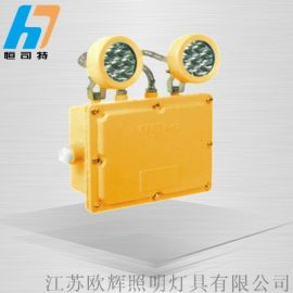 LED双头防爆应急灯,AC220v消防应急防爆灯两头,国标双头应急灯