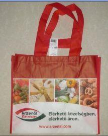 欧美环保级别无纺布超市购物袋  生产厂家供应精美环保手提袋