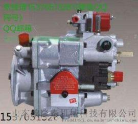 直供K1069-TY220C推土机发动机PT燃油泵总成3165468