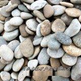 本格 3-5mm鹅卵石滤料 园林景观 水处理鹅卵石