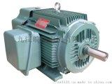 皖南电机 NEP系列超高效率三相异步电动机