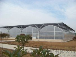 山东五合新型阳光板温室
