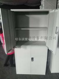 文件柜 更衣柜 铁皮柜 档案柜  工具柜 生产厂家