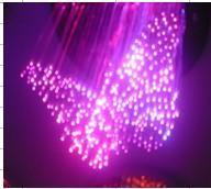 蝴蝶光纤灯(GB611)