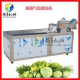 全自动蔬菜水果气泡清洗机 臭氧消毒洗菜机