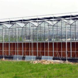 蓝莓阳光板温室大棚 阳光板温室大棚建设 改造