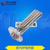 百點熱能 蒸汽鍋爐電熱管 蒸燙機加熱管 130法蘭電熱管380V