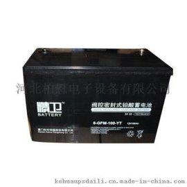 科华 精卫蓄电池 UPS后备电瓶 6-GFM-24-YT/12V24AH 全新现货
