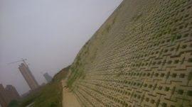 生态连锁护坡砖(400*285*100)