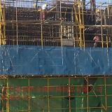 外围安全防火爬架网 建筑提升架 圆孔洞洞板 厂家直销
