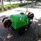 供应手推式小型洒水机汽油6.5马力农用打药机