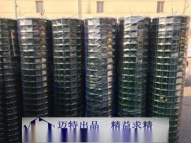 荷兰网 PVC荷兰网 草坪围网 养殖围栏网 绿色铁丝围网 **电焊网