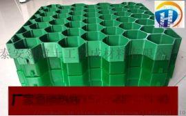 合肥塑料植草格厂家价格公道
