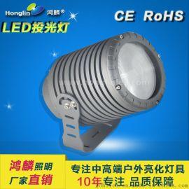 窄角度投光燈_遠程聚光燈50w_投射50米的投光燈