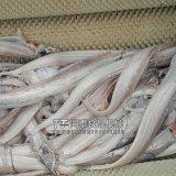刀鱼清洗机刀鱼去白磷机刀鱼罐头带鱼去鳞机