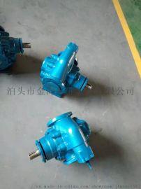 KCB铜轮不锈钢齿轮泵、食品卫生泵