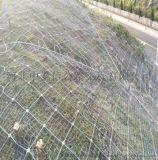 衡水廠家生產絲網,廠家  防護網