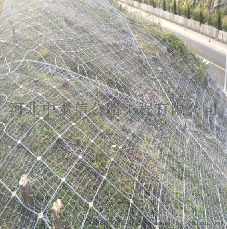 衡水廠家生產絲網,廠家直供防護網