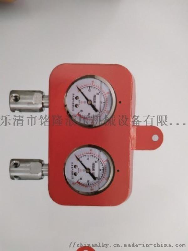 综采支架测压表(双表)带外壳式双针耐震压力表