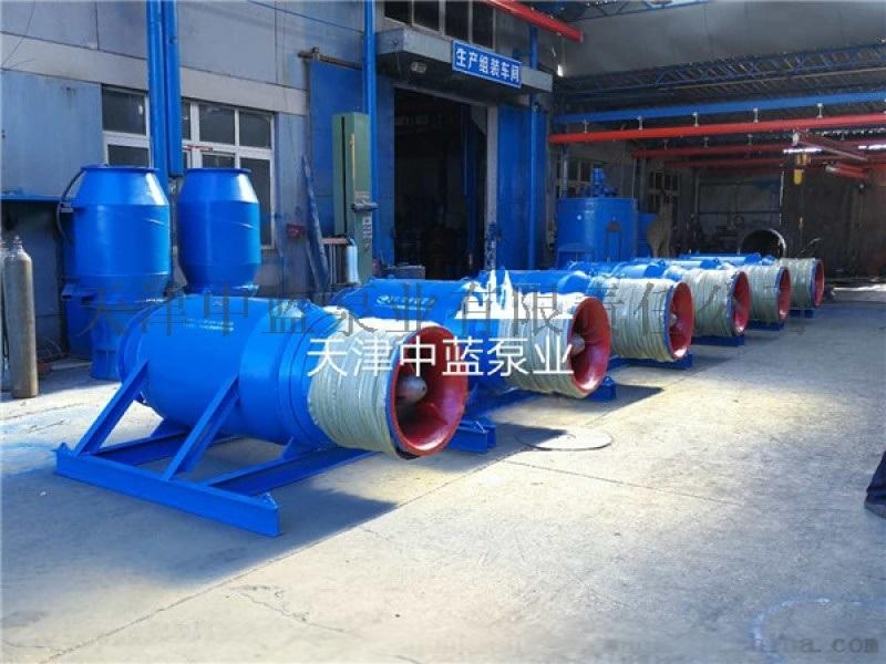 600QZB潜水轴流泵 专业水泵生产厂家