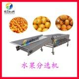 厂家定制 水果直径分选机 核桃分级机
