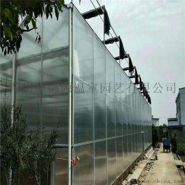 阳光板温室大棚-花卉园艺温室