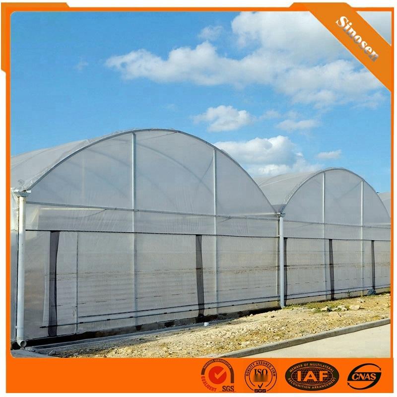 供应连栋温室 薄膜连栋温室结构 薄膜连栋温室