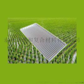 供应惠和ZGW358J新型毯式秧盘