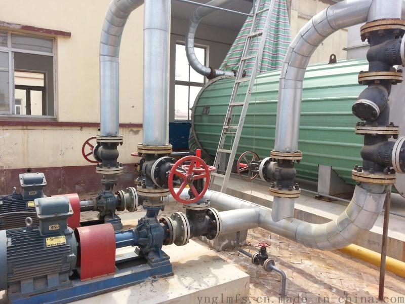 艺能锅炉环保燃油燃气锅炉天然气锅炉