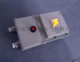BLK-G63/3不锈钢防爆断路器(可带漏电)
