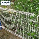 双圈护栏网  园林花坛装饰防护网 低碳冷拔钢丝网