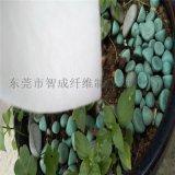 厂家绿色环保打湿包装水果蔬菜保鲜保水棉保水棉批发