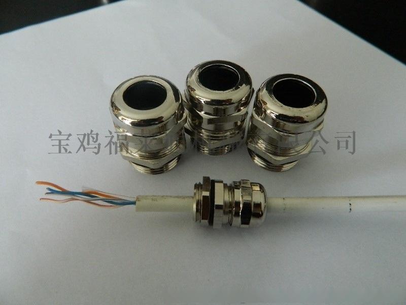 Φ32-PG21黄铜格兰头