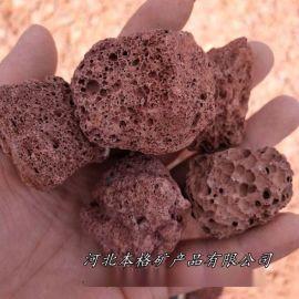火山岩滤料 生物培菌红色多肉专用废气污水处理火山石
